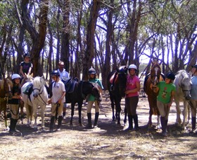 Bellarine Horse Riding Centre - Attractions